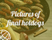 Pictures of final hotdogs