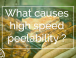 What causes high speed peelability ?